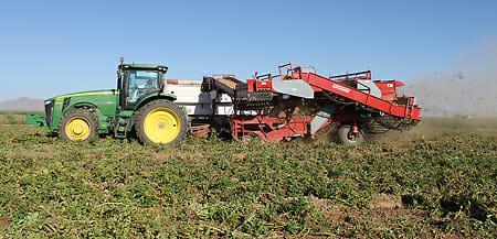 Potato-harvester_4234-web